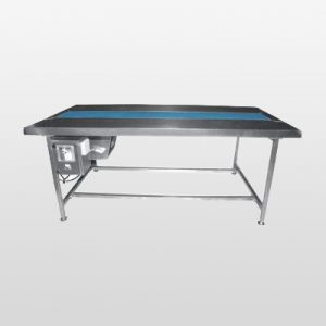 Packing Belt Conveyor manufacturer, supplier, India, Gujarat